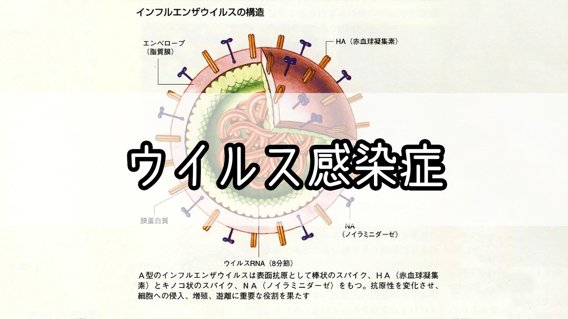 『ウイルス感染症』のゴロ・覚え方