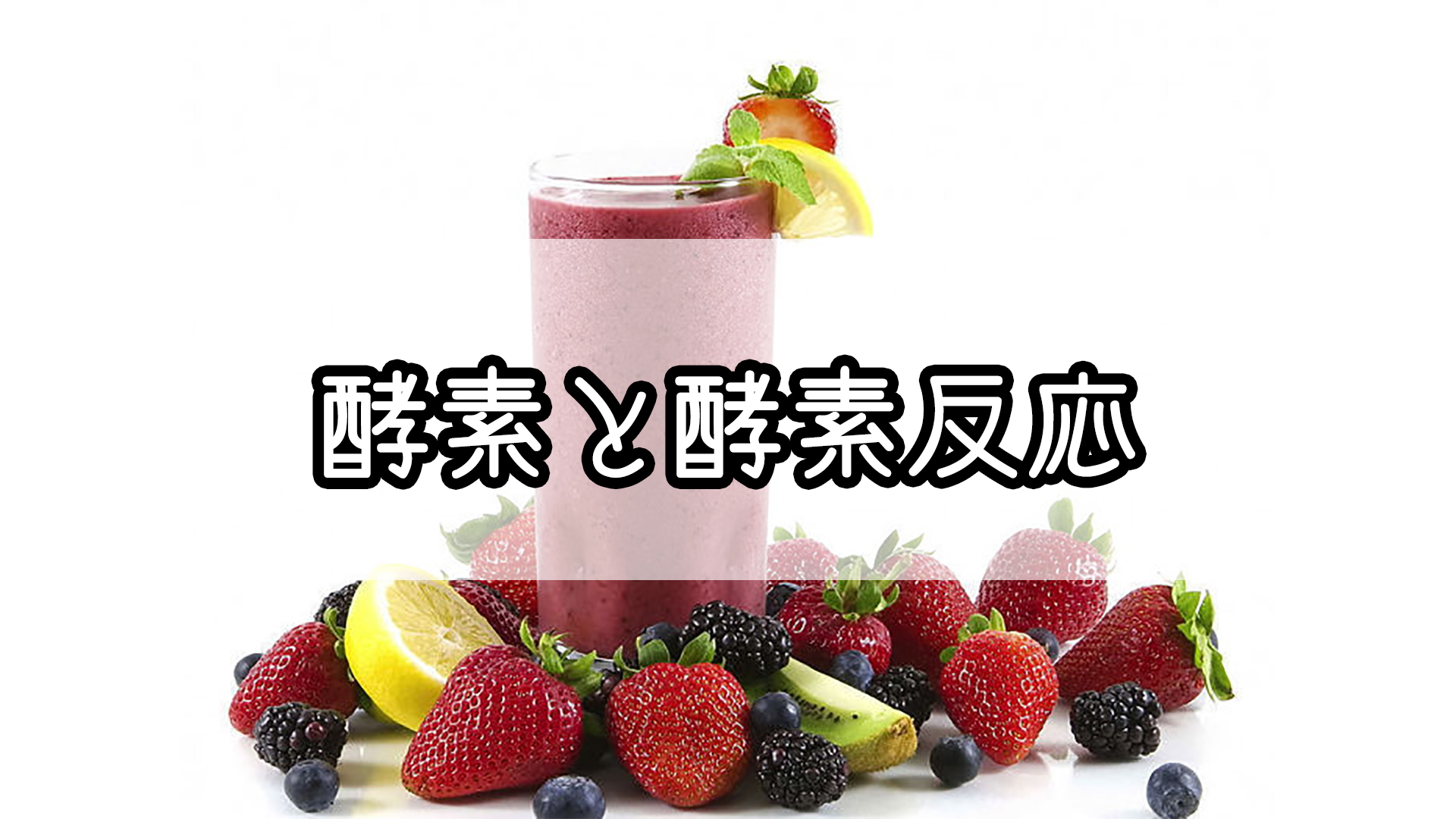 『酵素と酵素反応』のゴロ・覚え方