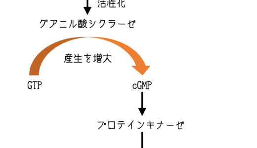【虚血性心疾患】のゴロ・覚え方